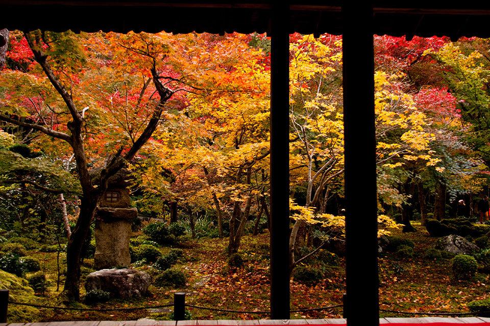京都の旅館