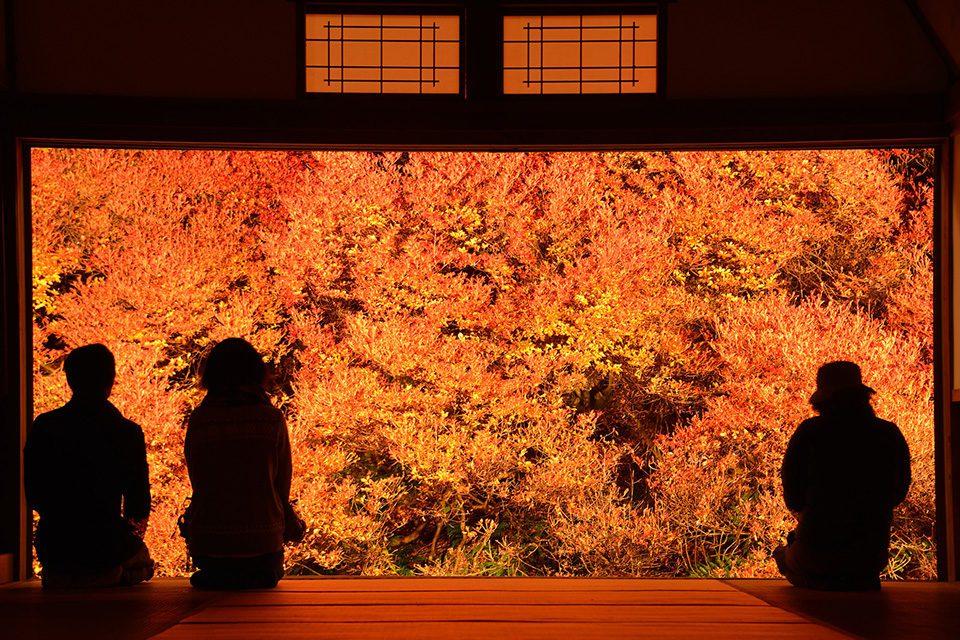 安国寺の紅葉と境内の秋