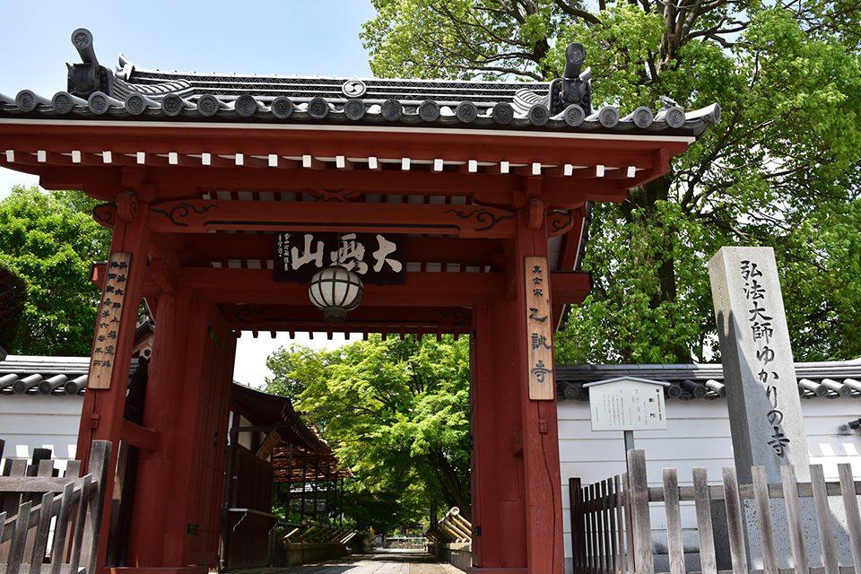 新緑の乙訓寺