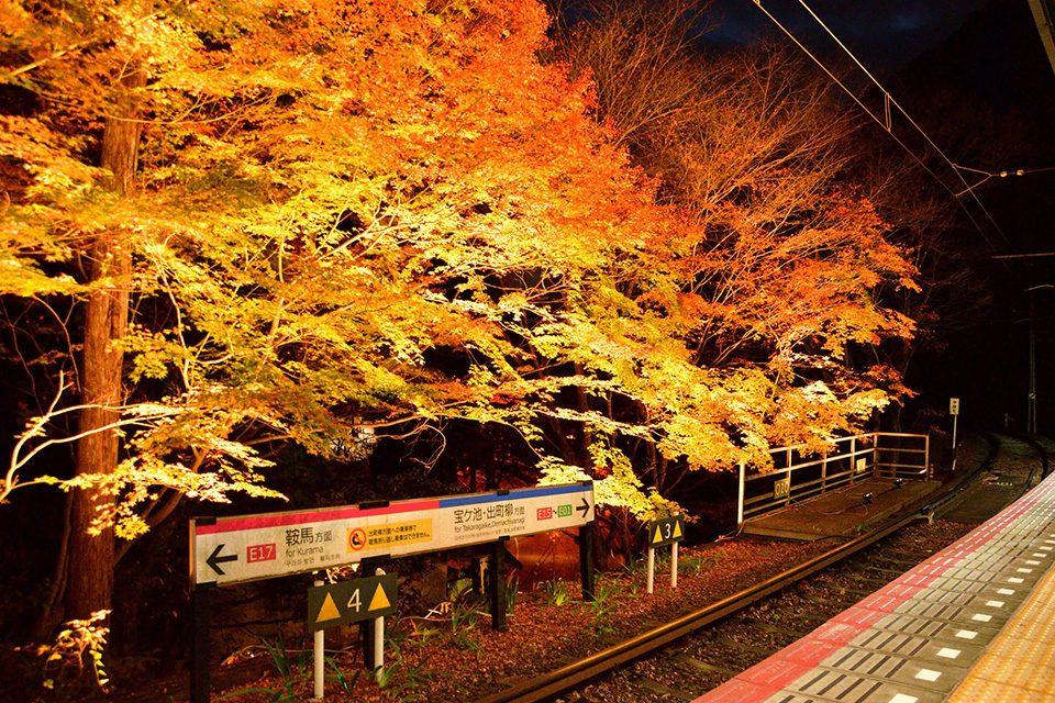 叡電貴船口駅の紅葉ライトアップ