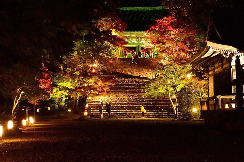 秋の神護寺ライトアップ