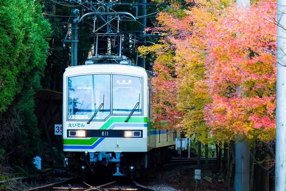 京都の叡電と紅葉
