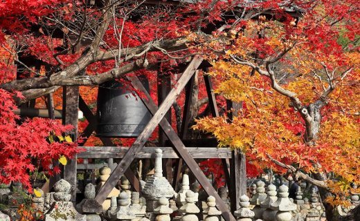 京都の紅葉晩秋
