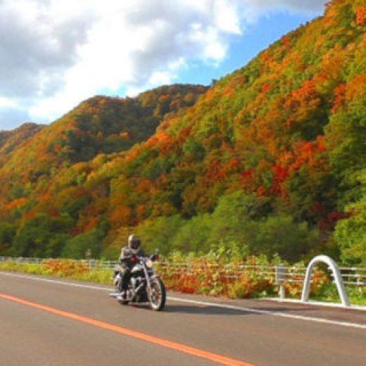 享受騎摩托車為樂趣的京都之秋