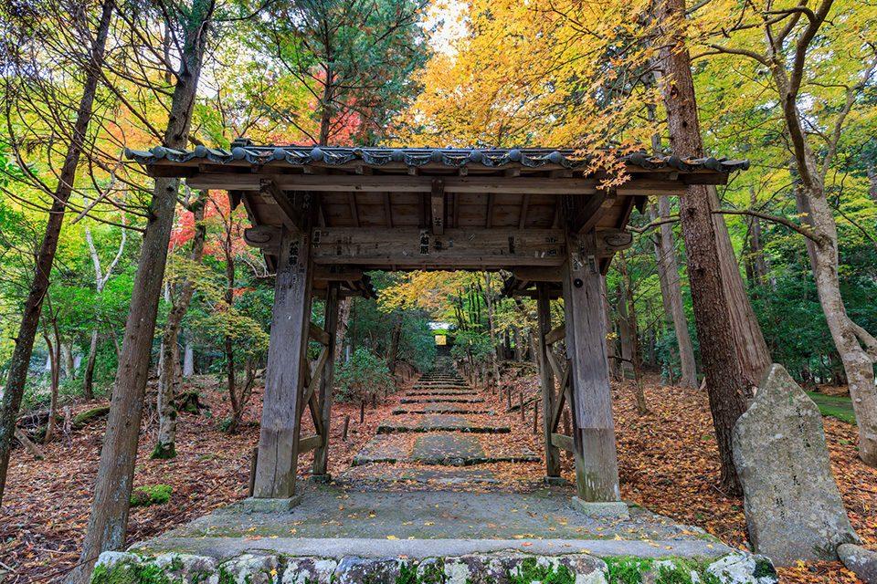 秋の常照皇寺