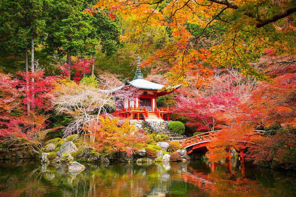 紅葉の醍醐寺
