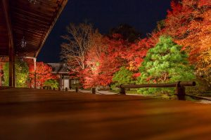 Fully enjoy the beautiful red leaves and the delicious dinner in Kyoto. Recommendations of restaurants nearby the fall foliage spots.
