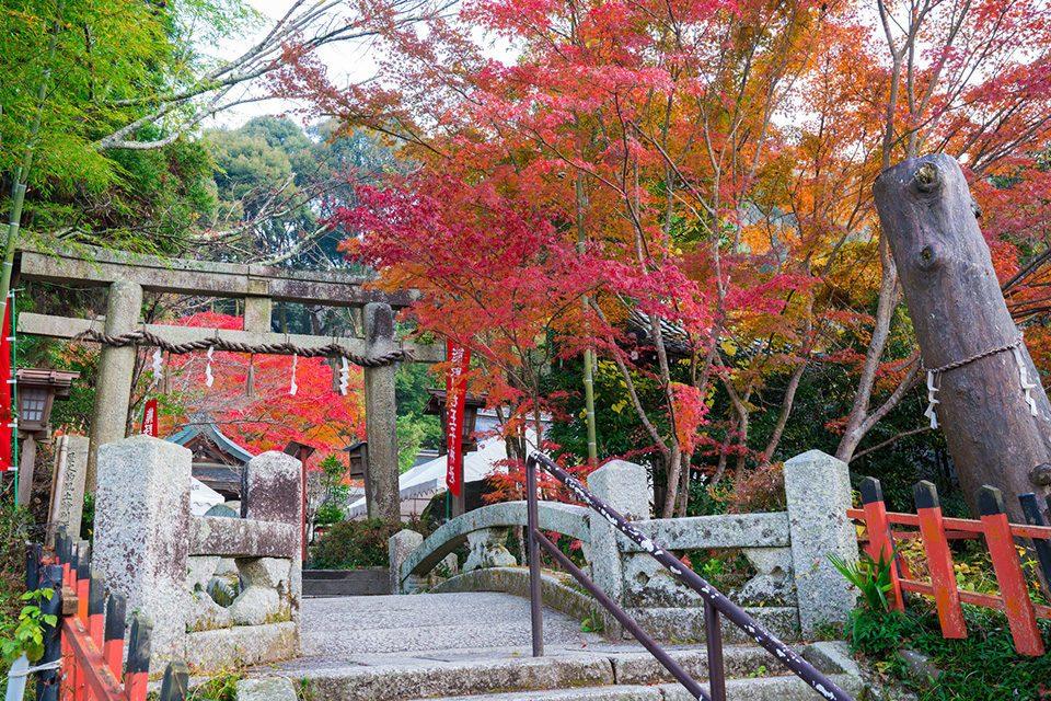 熊野若王子神社の紅葉