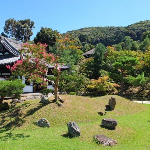 高台寺の庭園
