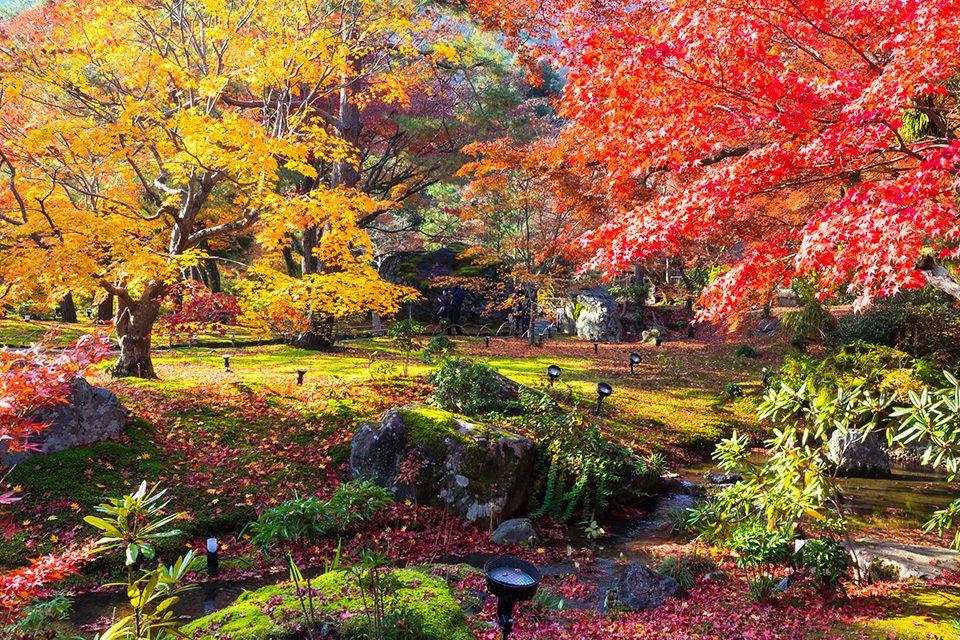 宝厳院獅子吼の庭