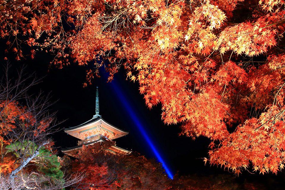 京都清水紅葉