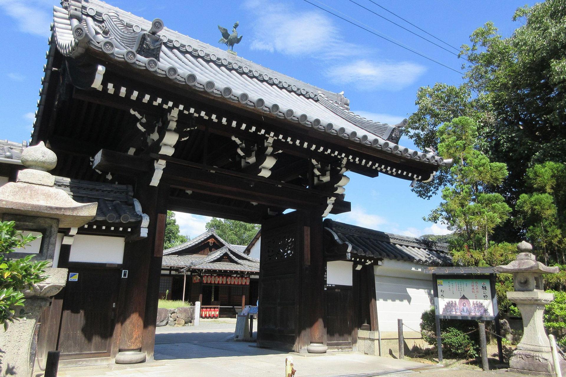 京都  櫻花  禦朱印