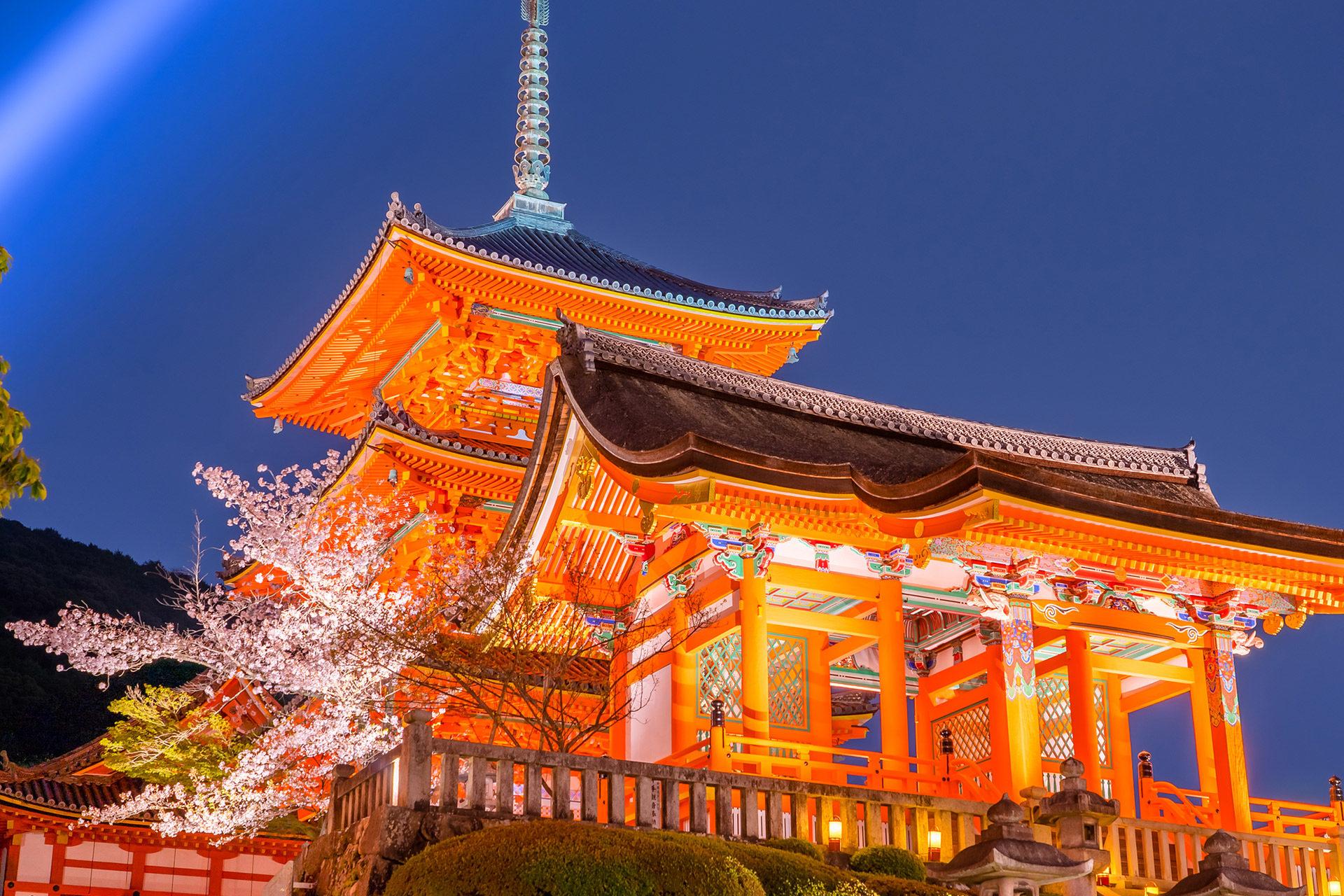 京都  櫻花  清水寺
