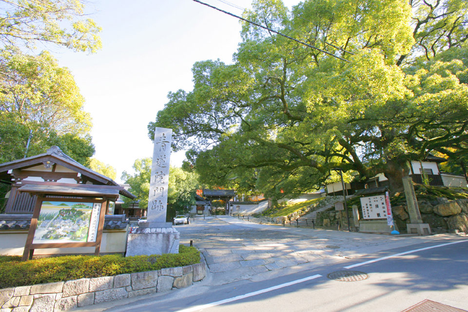 擁有青不動明王像的「青蓮院門迹」