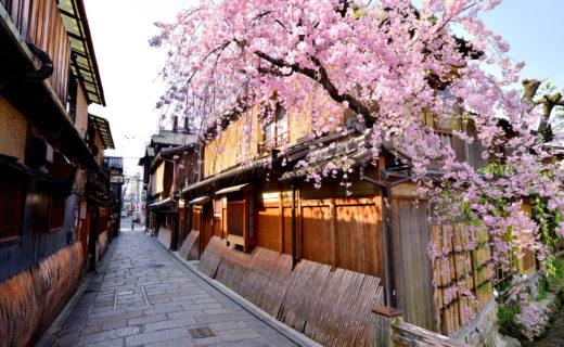 在京都度過的春假特輯!
