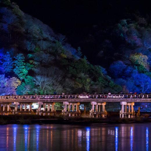 京都 冬季 活動
