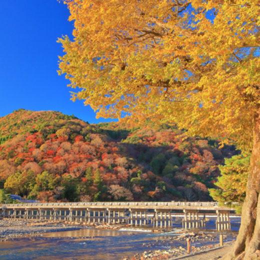 要不要穿著和服在京都散步?