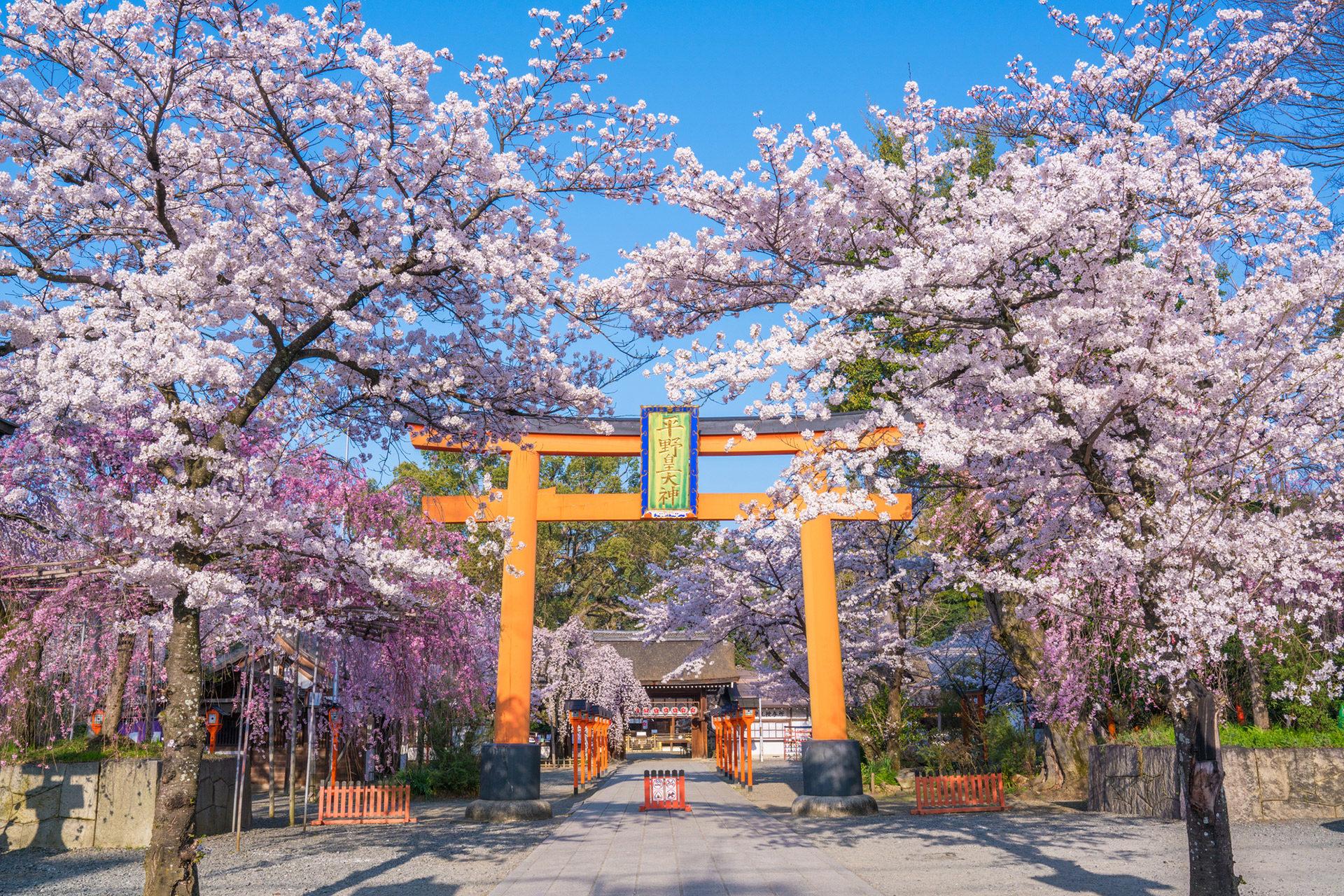 京都神社是