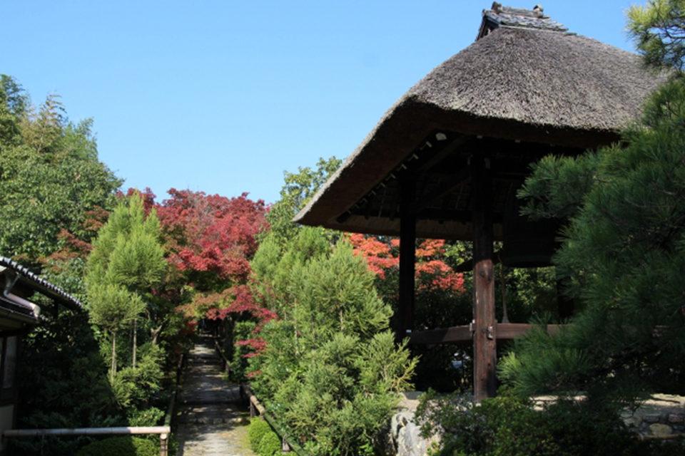 去京都的話想去看看能欣賞楓葉的植治庭園11選