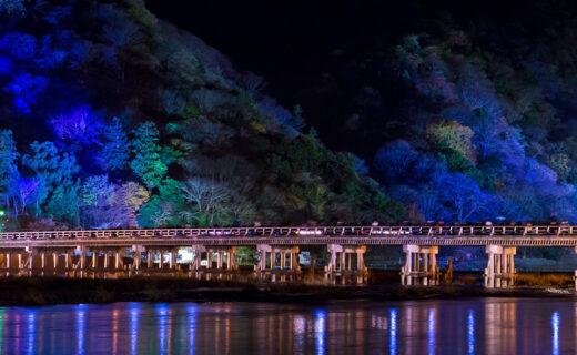 為大家介紹京都絕景中不可或缺的「橋」和能盡情觀賞楓葉的景點