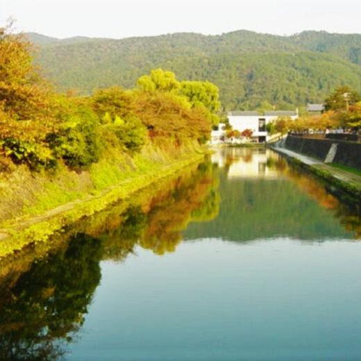 在京都玩吧
