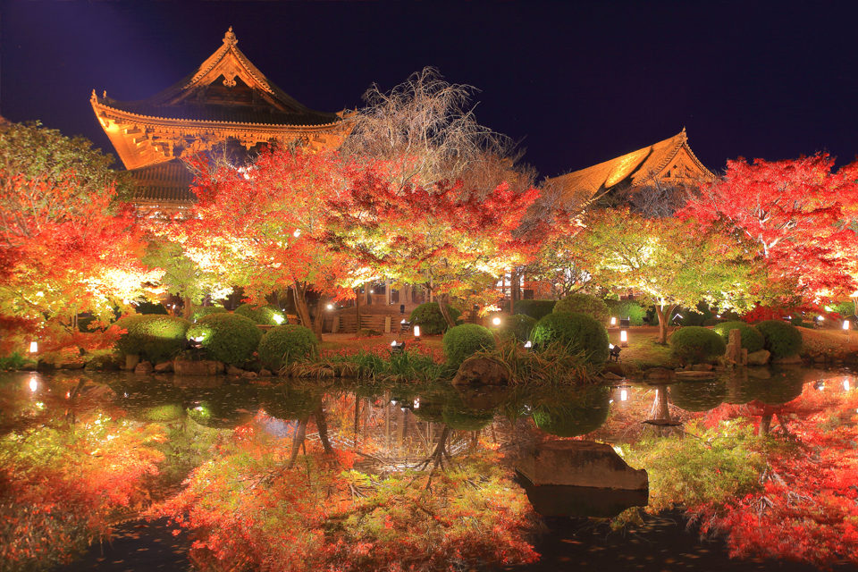 介紹楓葉名勝附近的餐廳