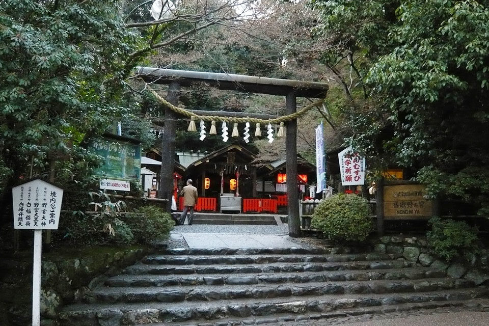 京都的紅楓葉