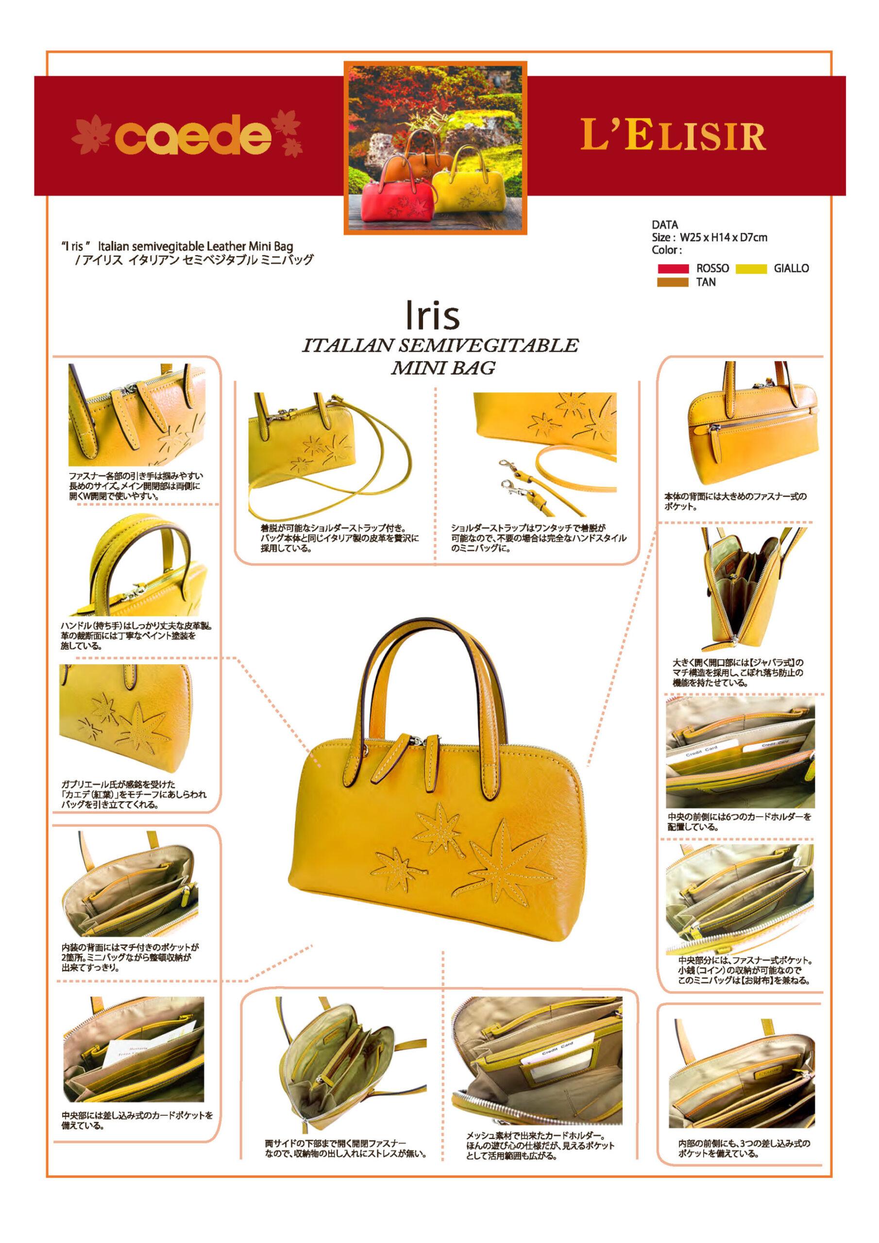 caedekyoto collection iris giallo
