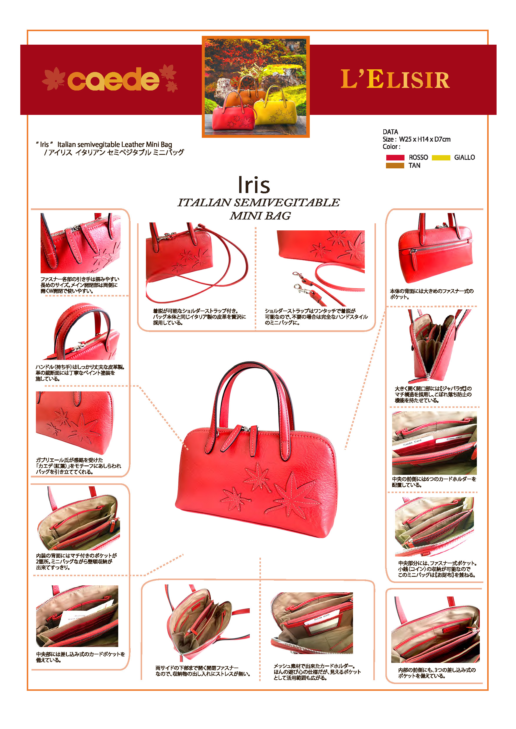 caedekyoto collection iris rosso
