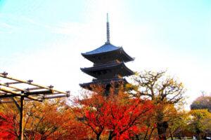 說起京都特有的風景就是五重塔!這裡介紹秋天京都獨有的楓葉名勝,讓您拍出獨一無二的照片!