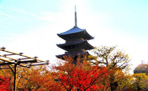 說起京都特有的風景就是五重塔