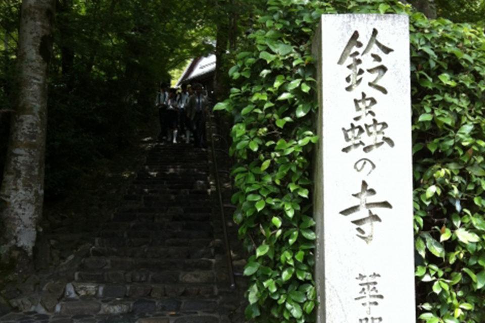 神社佛閣的楓葉