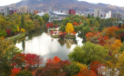 楓葉季節的京都的飯店也很擁擠!