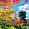 享受京都的世界遺產和美麗的楓葉的和諧!