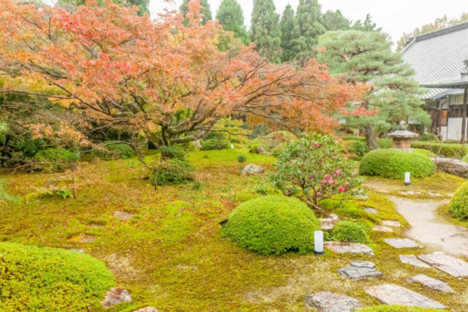 以「悟性之窗」聞名的雲龍院,楓葉也很美!