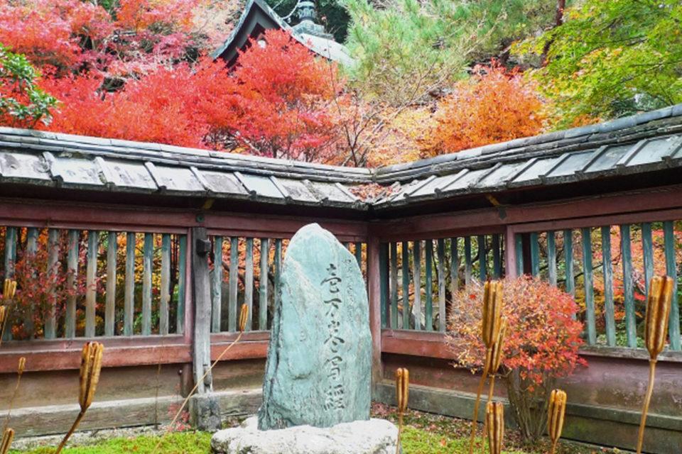 在京都作為鮮為人知的楓葉聖地而備受矚目的毘沙門堂是