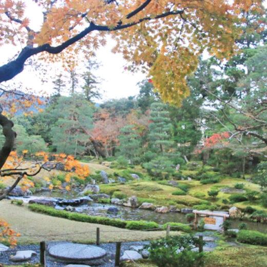 近代日本庭園中觀賞的楓葉之美是。
