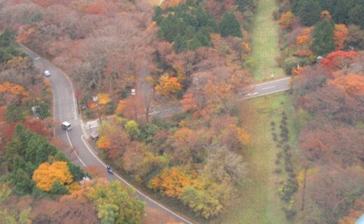 乘坐直升飛機從空中飽覽京都的楓葉!