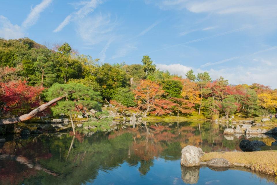 天龍寺庭園的秋天果然很美