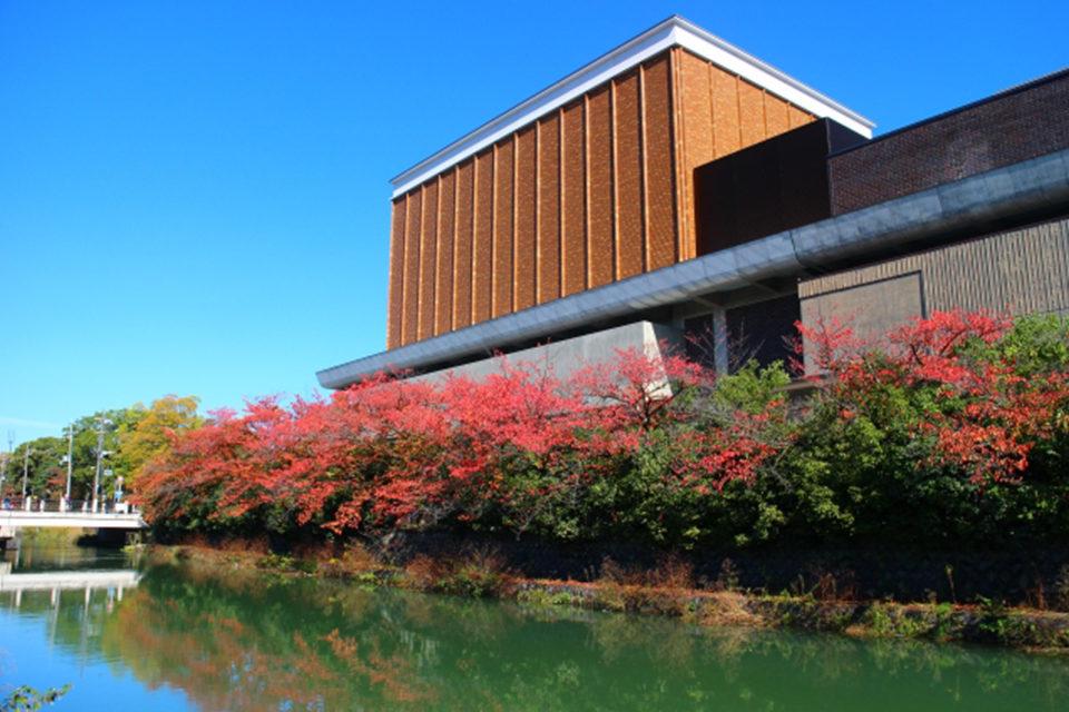 介紹可以一起享受疏水和楓葉的名勝!