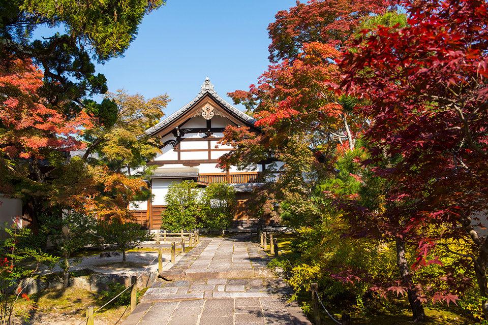 京都天龍寺