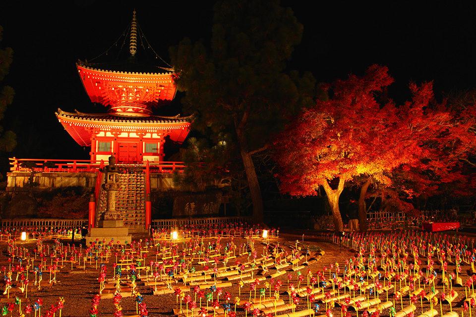 大覺寺楓葉的重點是??
