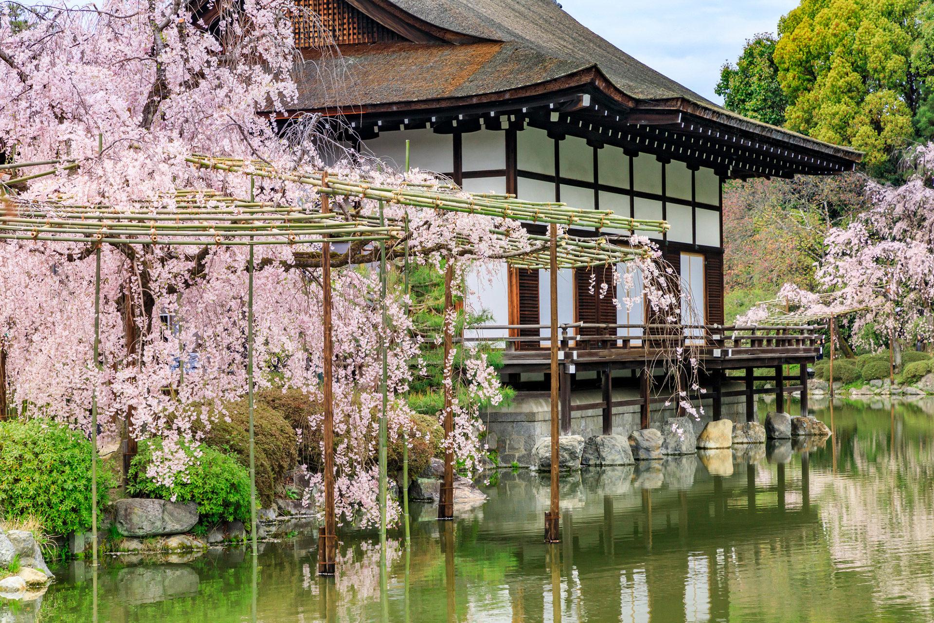 京都的平安神宮