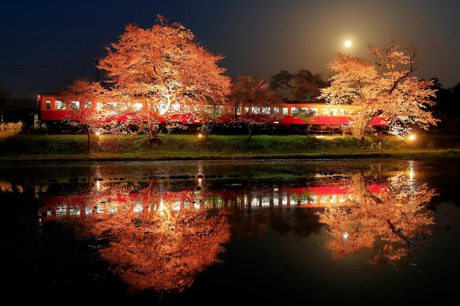 京都有名的觀光地「嵐山」